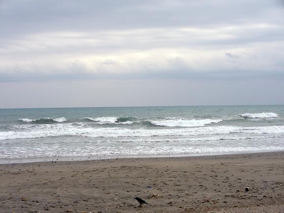 2009/12/01 12:22 片浜