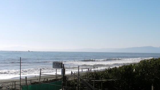 2010/12/04 12:11 チサン