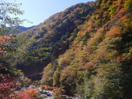 2012/11/11 梅ヶ島温泉
