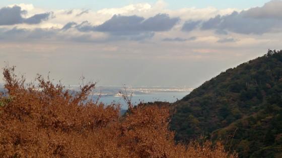 箱根からの眺め