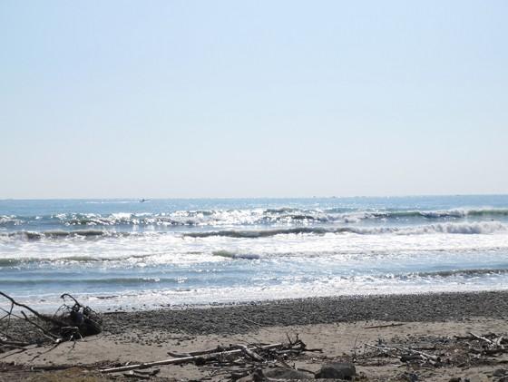 2015/10/07 9:55 片浜
