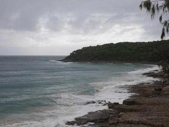 2016/01/16 noosa Sunshine Coast Australia
