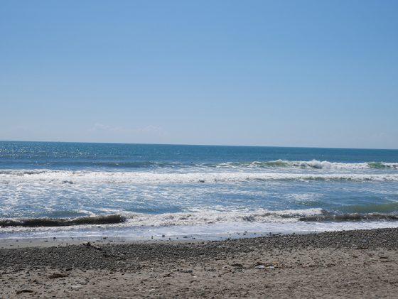 2016/08/26 9:55 片浜