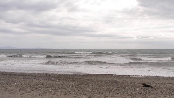 2013/09/27 10:19 片浜