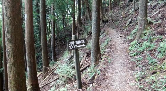 福養滝への道