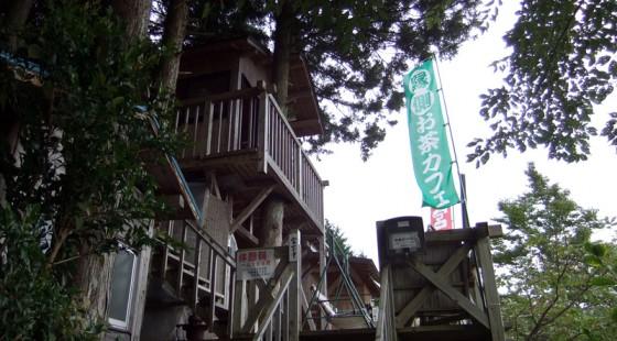 大間のツリーハウス